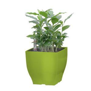 Samozavlažovací květináč G21 Cube mini zelený 13.5cm